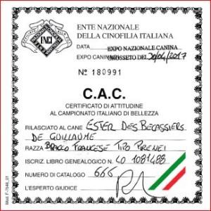 CAC Ester